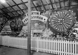 1928 District Exhibit