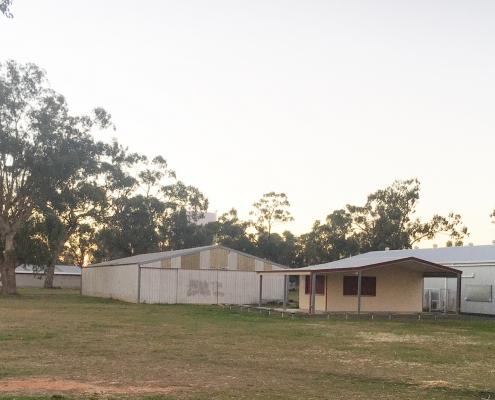 Pavilion Precinct